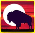buffalo_slot_special_Buffalo_Moon_581