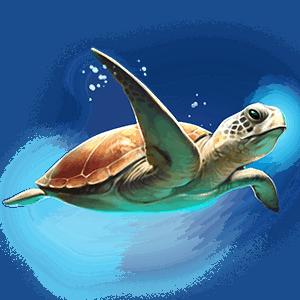 Atlantis_turtle