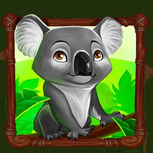 Wild_Australia_coala