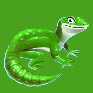 Wild_Australia_lizard