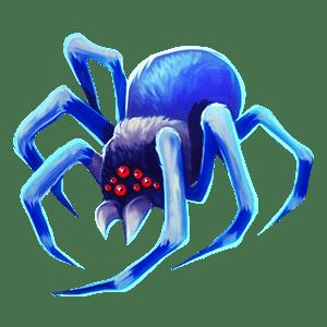 Wild_Australia_spider