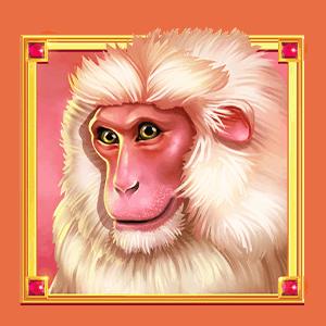 Heart_of_India_monkey